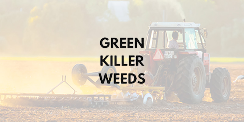 Green Killer Weeds