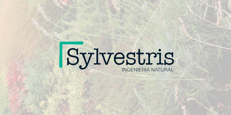 Sylvestris