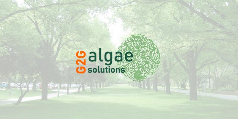 G2G Algae